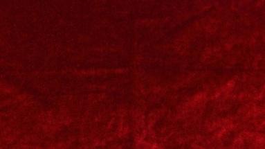 bretz-austria-bezugsstoff-619412-tomato
